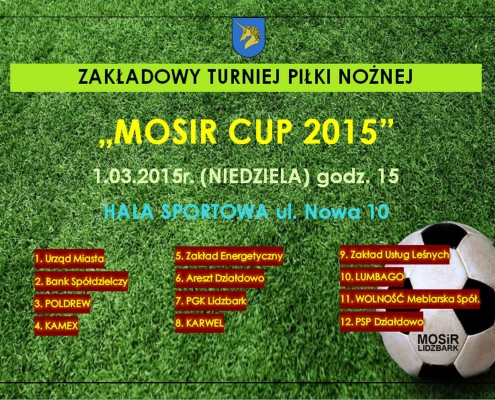 mscup2015